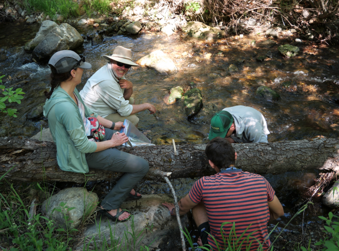 group collecting samples in California mountain river