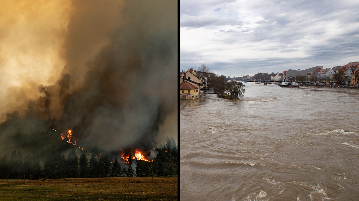 This summer, several European countries experienced unprecedented flooding and wildfires in the Western United States raged for months. In total, these natural disasters have caused billions of dollars in damages and hundreds lost their lives. (Adobe stock images)